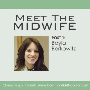 Meet The Midwife Bayla Berkowitz Baltimore Birth Doula