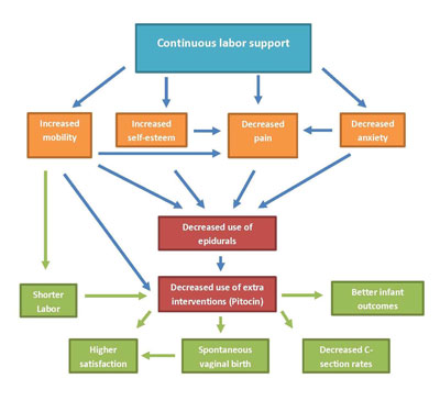 Conceptual model for continuous doula support